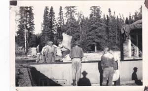 RP: LOGGING Camp #12 , Minnesota, 1910s ; Loading Stores
