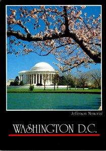 Washington D C Jefferson Memorial At Cherry Blossom Time 1987