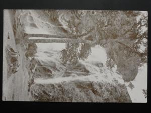 Ireland WICKLOW Enniskerry, The Waterfall Powerscourt - Old Postcard