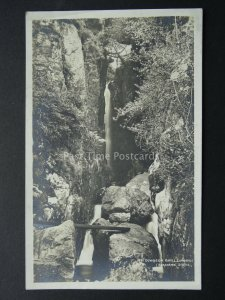 Cumbria LANGDALE Dungeon Ghyll c1940's RP Postcard by G.P. Abraham