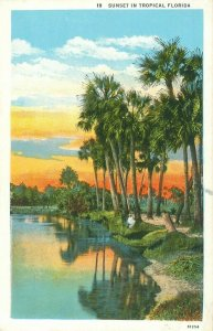 Sunset in Tropical Florida, Palm Trees Reflected in Water Colorful Postcard