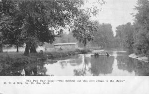 Michigan~Paw Paw River Scene~Boys in Boat~Faithful Elm Tree~Private Mailing Card