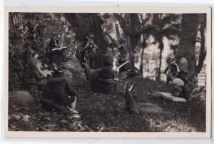 RPPC, Elves in the Forest