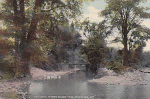 Scenic view,  Red Creek,  Genesee Valley Park,  Rochester,  New York,   PU_1915