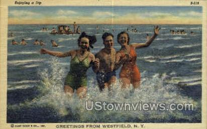 Westfield, New York, NY Post Card Postcard Westfield NY Unused