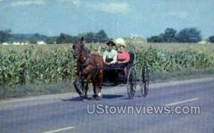 The Amish courting buggy -pa_qq_5250