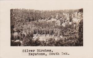 Silver Birches Lodge Keystone South Dakota Real Photo