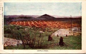 Colorado Cripple Creek Panoramic View 1907