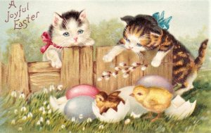 Easter Card. Two kittens watching 2 chicks hatch. Embossed. A Joyful Easter