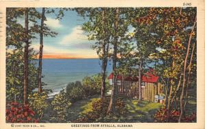 Attalla Alabama~Log Cabin Surrounded by Trees along Coast~1941 Postcard