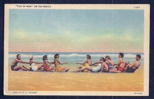Lady Swimmers Playing 'Tug of War' on Beach Used 1935