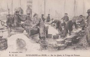 Fish Fishing Traders Fishermen Markets Boulogne Antique French France Postcard