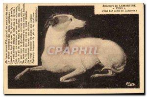 Old Postcard Remembrance Lamartine Fido Dog