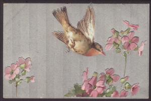 Bird,Flowers Postcard