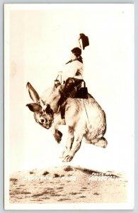 Sunfishin Rodeo Cowboy Rides Exaggerated Jumping Jack Rabbit~1930s RPPC