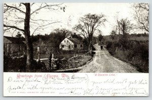 Algoma Wisconsin~Horse Buggy on Country Lane~Rural Farm Houses~Fenced~1907 B&W