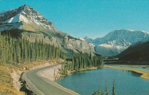 Canada Columbia Icefield In Canadian Rockies Alberta