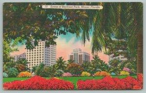 Miami Florida~Bayfront Park From Edge Of Trees~Background Bldgs~Vintage PC