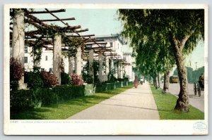 Pasadena California~Colorado Street & Maryland Pergola~Horse & Buggy~c1910