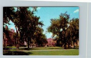 Providence RI-Rhode Island, Campus, Brown University, Chrome Postcard
