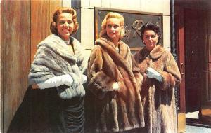 Birmingham AL Furs by Robert Coats Postcard