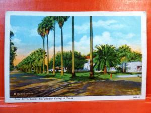 Postcard TX Rio Grande Valley of Texas Palm Drive