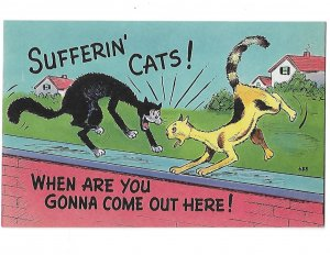 Suffering Cats!  When are You Gonna Come out Here?