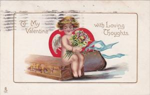 Valentine's Day Cupid Holding Flowers Sitting On Suitcase 1913 Tucks