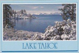 Lake Tahoe Winter Wonder Land Lake Tahoe California