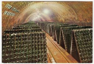 Spain; Cavas Codorniu, Bottles In The Racks PPC, Unposted, c 1970's
