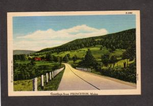 ME Greetings From Princeton MaIne Linen Postcard