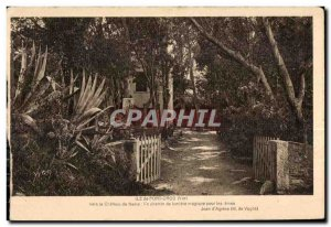 Old Postcard The Port Cros (Var) To the Castle feerie A magical light path for