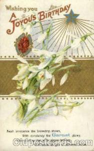 Garnet Birth Stone Postcard Post Card  Garnet