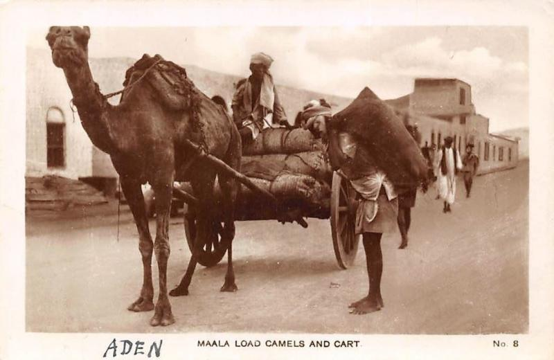 Yemen Aden Maala Load Camels and Cart, Carriage