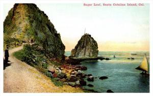 13595  CA Catalina  Island  Sugar Loaf