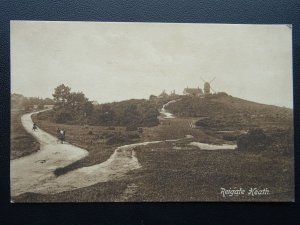 Surrey REIGATE HEATH showing Windmill - Old Postcard by Frith 61670