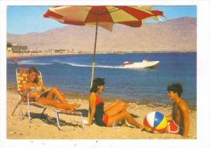 People Relaxing, Eilat Famous To Its Exotic Scenery & Superb Seashore, Eilat,...