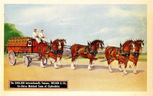Six-Horse Hitch of Clydesdales - Wilson & Co. Meat Packers