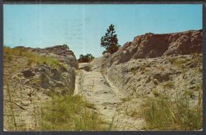 Oregon Trail Ruts,Southeastern Part of WY BIN