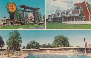 Aloha Motor Lodge And Restaurant, Swimming Pool, ST. MARY'S RIVER, Georgia-Fl...