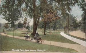 New York Elmira Riverside Park Maple Avenue 1909