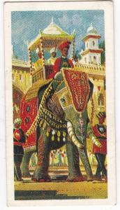 Trade Cards Brooke Bond Tea Transport Through The Ages No 1 Elephant