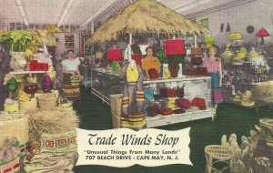 Postcard NJ Trade Winds Shop Cape May New Jersey