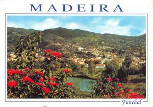 Postcard MADEIRA Funchal #849