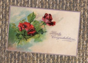 Hearty Congratulations Old Antique Postcard, Embossed With Red Roses