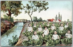 MULTIPLE BABIES ON CABBAGE FIELD ANTIQUE POSTCARD