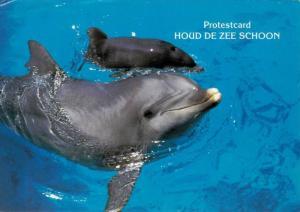 Two Bottlenose Dolphins, Protestcard HOUD DE ZEE SCHOON, PU-1989