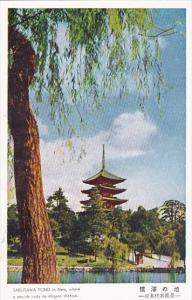 Japan Nara Pagoda Overlooking Sarusawa Pond