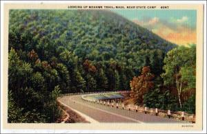 MA - Near State Camp, Mohawk Trail