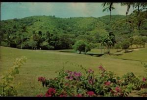 Fountain Valley Golf Course Robert Trent Jones Resort Vintage Postcard B01